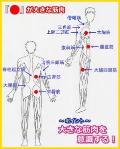 大きな筋肉P15【新】